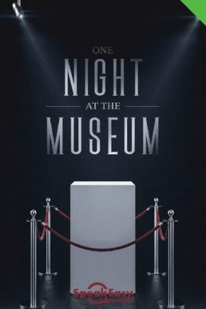 English Book One Night at The Museum