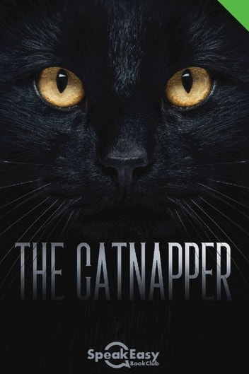 English Book The Catnapper