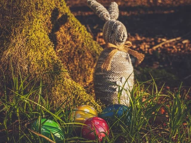 4 Easter eggs and an Easter rabbit