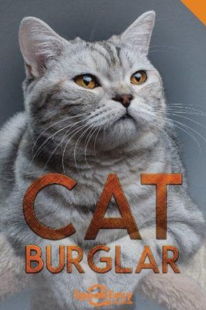 English Book Cat Burglar
